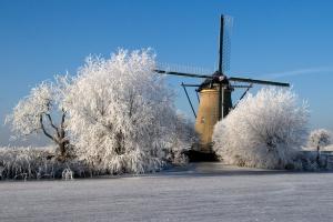 molen met winterse bomen.jpg