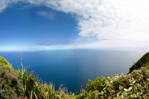panoramaNZ4 (2).jpg