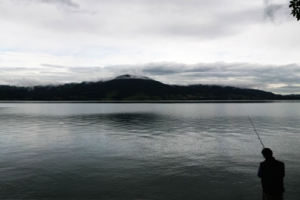 panorama vissers.jpg