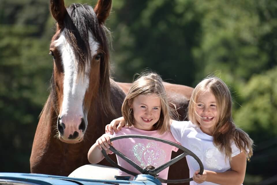 nikon_nikkor_lens_children_horse_DX70-300mm_F45-63G_VR_01_0482_A4--sample-960-large